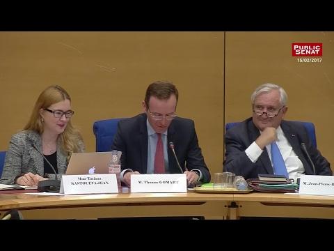 Auditions sur la Russie et audition de Jean-Pierre Bayle - Les matins du Sénat (20/02/2017)