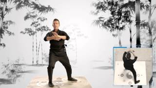Learn Tai Chi Online with Jet Li
