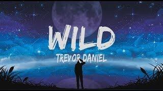 Gambar cover Trevor Daniel - Wild (Lyrics)