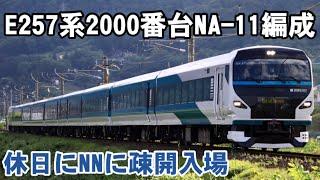 E257系2000番台NA-11編成久しぶりの快晴の中、NN疎開入場