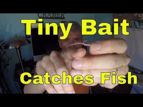 TINY Ultralight Panfish Bait/Technique