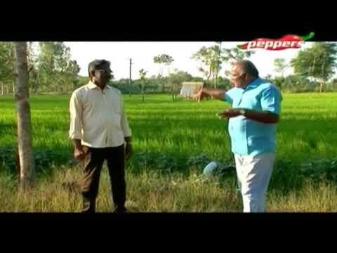 Organic Vivasayi   Farmer Kannaiya   06 May  2018