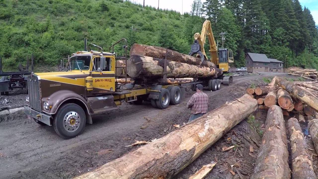 Three Log Load ~ David hull s kenworth logging trucks being loaded with