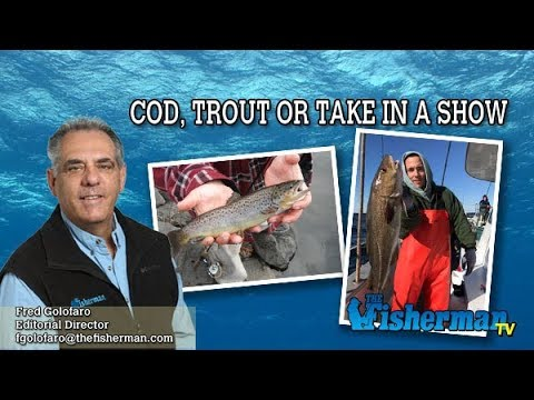 March 14, 2019 Long Island Metro Fishing Report With Fred Golofaro