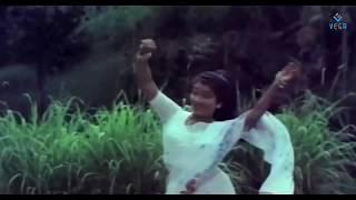 Rendu Panjavarna (Nenja Thottu Chollu)