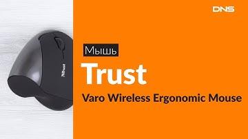Распаковка мыши Trust Varo Wireless Ergonomic Mouse / Unboxing Trust Varo Wireless Ergonomic Mouse