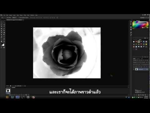 Photoshop Cs6 No.11 : การทำภาพขาวดำ [Thai]