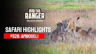 Safari Highlights #526: 15 & 16 June 2019 (Latest Wildlife Sightings)