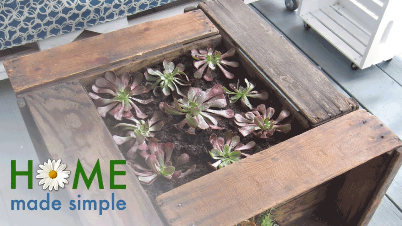 This Succulent-Planter Coffee Table Is What Every Backyard