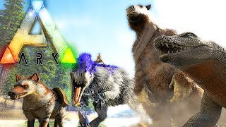 ARK Survival Evolved - RABIES, HYAENODON, MEGATHERIUM, MEGALANIA, HOW TO TAME - UPDATE 258 Gameplay