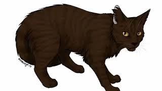Коты воители; 11 самых злых и жестоких котов в книгах Коты воители