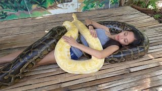 Snake Massage Helps Girl Conquer Fear Of Snakes