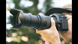 Tamron 18-400mm F/3.5-6.3 Review by Georges Cameras