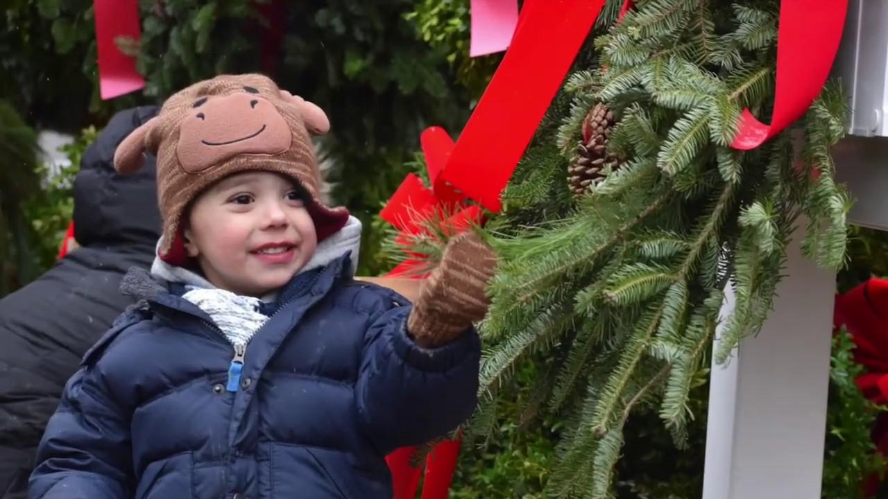 Cut Your Own Christmas Tree Long Island.Hidden Pond Tree Farm Where Christmas Grows All Year Long