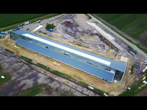 This solar-powered Dutch poultry farm specializes in 'carbon-neutral' eggs