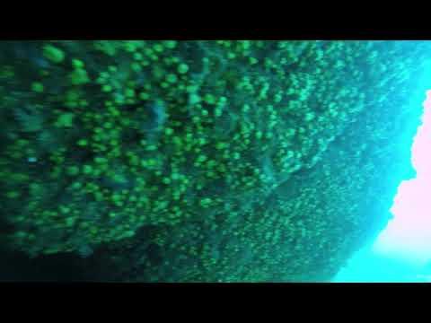 Gita sub a Portofino