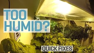 Too Humid in your Grow Room?(, 2015-04-30T08:26:01.000Z)