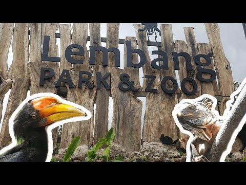 liburan-ke-lembang-park-&-zoo---bandung