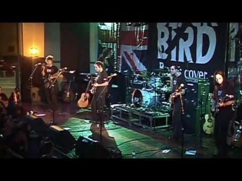 Black Bird Band - I Am The Walrus