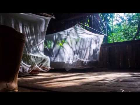 The Orinoco River Delta, Venezuela HD sound:MONOCAMPERS-3D Funk