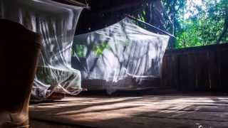 The Orinoco River Delta, Venezuela, 2014 HD sound:MONOCAMPERS-3D Funk
