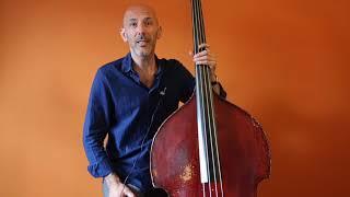 arnoud van den berg gypsy jazz bass volume 2