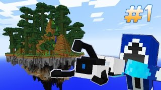 Sky Island Survival With Portal Gun - PORTAL #1