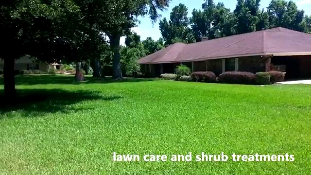 total pest solutions specializing in pest control lawn care