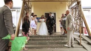 Свадебный ролик, съемка и монтаж АПИК студия