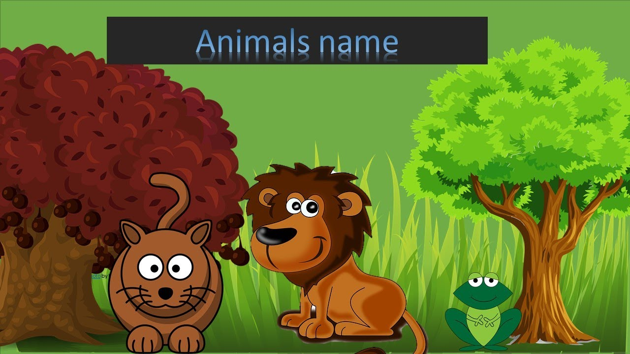 Animals name for kids in English|Basic learning|Preschool learning| Sania's  buttercup