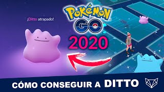 LOS 15 POKÉMON DONDE SE ESCONDE DITTO EN 2020 - Pokémon GO [Neludia]