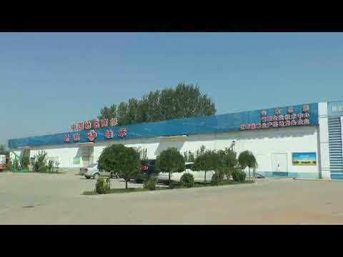 Shandong Halin Group Co.,Ltd.