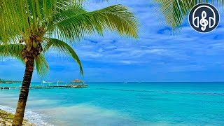 Sounds Of Caribbean Sea. 8 Hours of Sea Waves for Relaxation, Meditation and Sleep