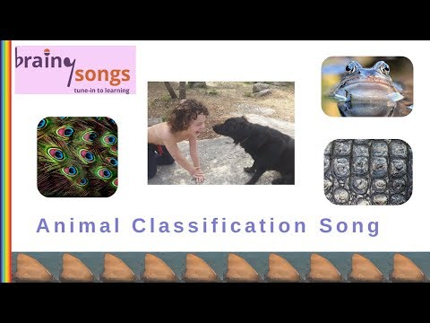 Animal Classification Song | Science Music Video For Kids