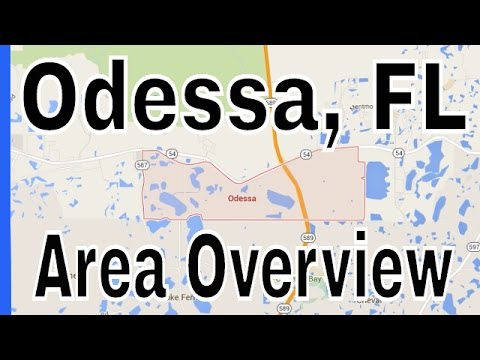 Homes for Sale in Odessa FL - Overview of Odessa by Lance Mohr - Tampa Realtor
