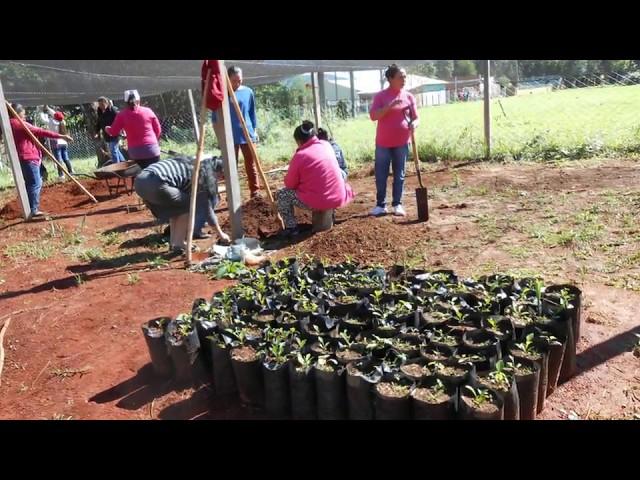SPOT 3 Agroforestería castellano
