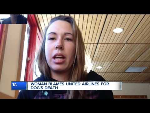 Woman blames United Airlines for dog's death