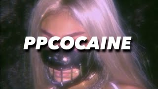 ppcocaine - SHAKE ! - PJ -hold on b***h did you hear what the f*** i said shake some ahh unreleased