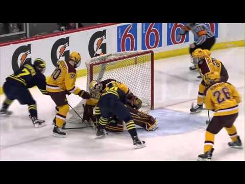 Michigan vs. Minnesota - 2016 Big Ten Men