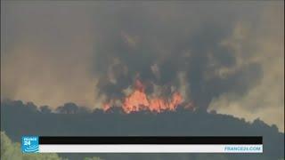 النيران تجتاح جنوب شرق فرنسا
