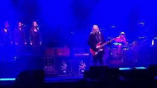 Gov't Mule - Comfortably Numb (Live)