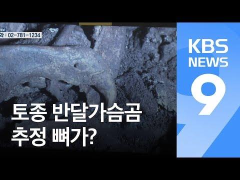 남한 토종 반달가슴곰 추정 뼈 첫 발견 / KBS뉴스(News)
