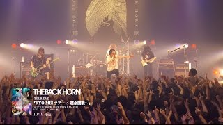 THE BACK HORN TOUR DVD 『KYO-MEIツアー ~運命開歌~』 [完全生産限...