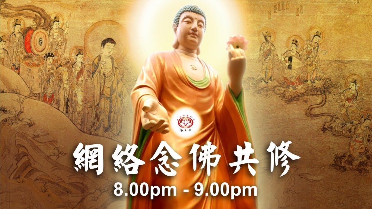 【同步】净土宗网络念佛【第224天】 + 开示视频《阿弥陀佛的偏心》 2020-10-27 Online Recitation Session(晚上8pm-9pm (GMT+8))