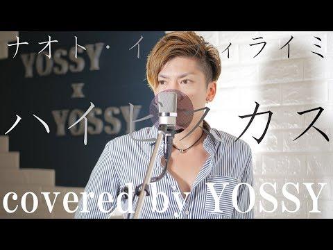 ナオト・インティライミ - 「ハイビスカス」 映画&ドラマ「覚悟はいいかそこの女子。」主題歌 covered by YOSSY