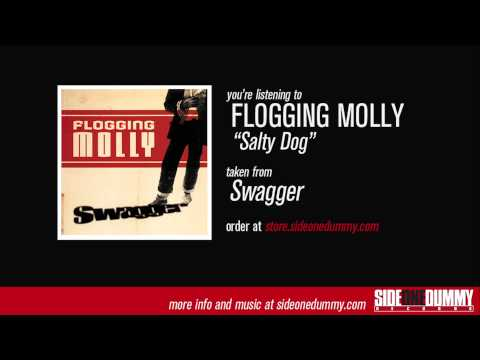 Flogging Molly Cruise 2020.5 Insane Things You Might See On Flogging Molly S Salty Dog