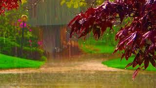 Relaxing Rain Sounds   Sleep, Insomnia, Meditation, Study, Yoga