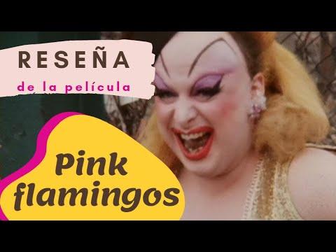 Pink Flamingos La Película Mas Asquerosa Producida (Reseña)