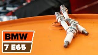 Kaip pakeisti Uždegimo žvakė BMW 7 E65 [Pamoka]