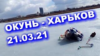 Журавлевка в Харькове зимняя рыбалка на окуня